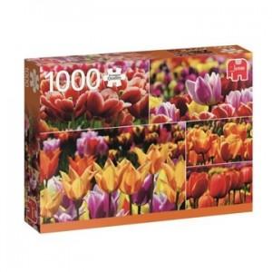 PC Holland Tulips (1000)