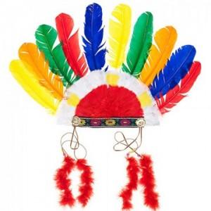 Indianentooi multicolor